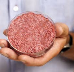Stem Cell Meat: The Novel Meat
