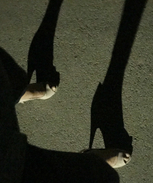Heel walking in the park at night.  Forming relationships with women is the biggest hurdle facing male gender non-conformists