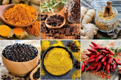 How to Use Spices in the Kitchen