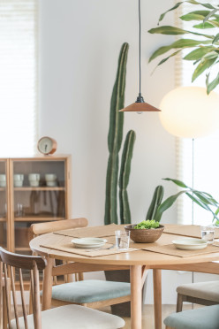 5 Reasons Why Furniture Rental is Your Solution to Home Furnishing