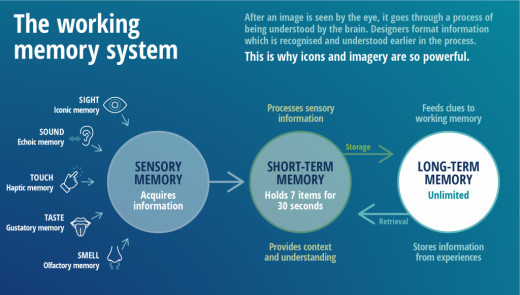The Working Memory System