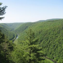 View from the East Rim (June 2009)