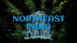 6 Must-Visit Places in Northeast India