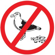 birdbgone profile image