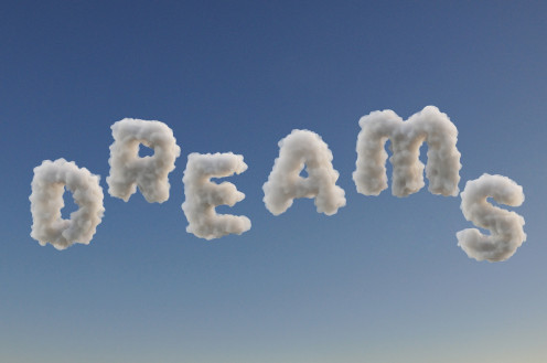 Dreams are a part of life especially during sleep.
