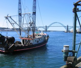 Yaguina Bay Bridge in Newport, Oregon. Image copyright Carolyn Augustine 2007.