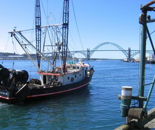 Yaguina Bay Bridge in Newport, Oregon. Image copyright Carolyn Augustine 2007.