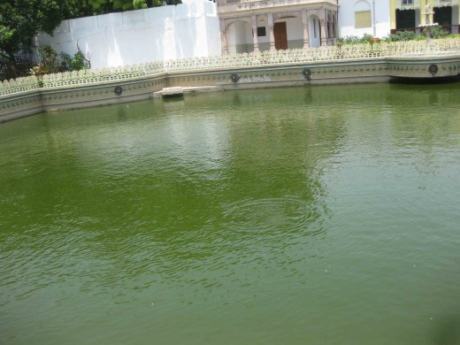 Pond: From different angle