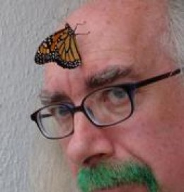Monarch on the Bard of Ely's head