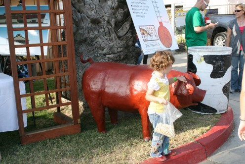Some kids really need to come to the County Fair even if only to learn about pigs!