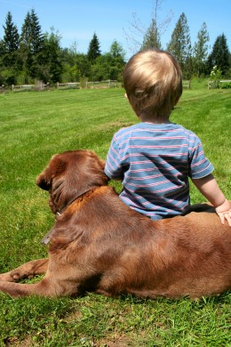 A natural moment between a boy and his dog. (Photo by Beth Twist)