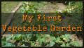 My First Vegetable Garden