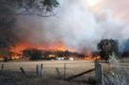 Beechworth district during February 2009 bushfires...