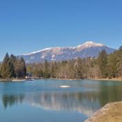 Feeling Slovenia profile image