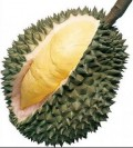 The Durian: King of All Fruits