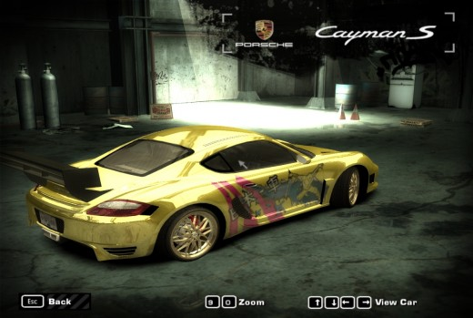 Gold Porche Cayman S racing car, back view.