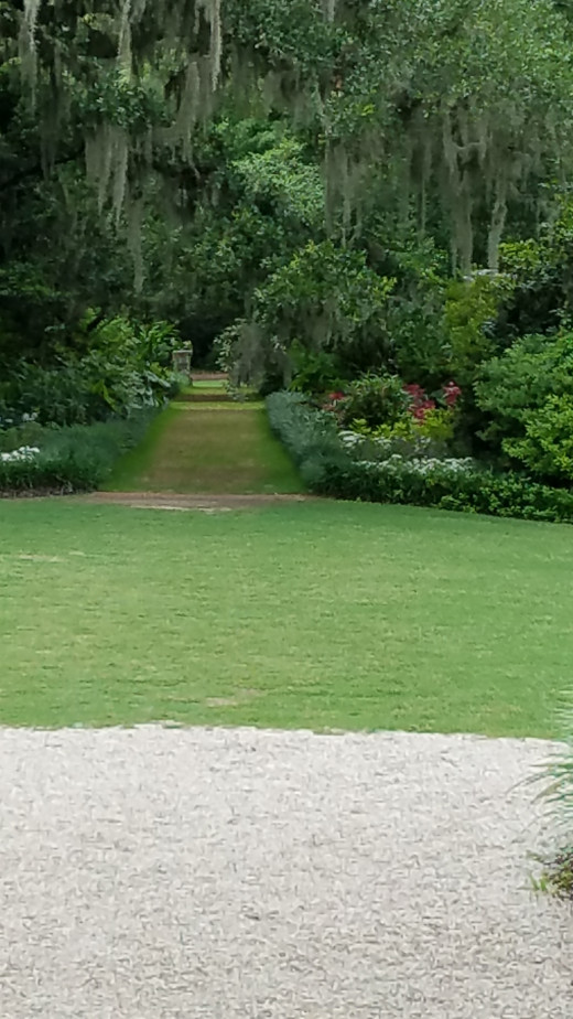 So many beautiful and romantic backdrops at Airlie Gardens.