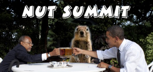 Crasher Squirrel Attends The Nut Summit Yesterday