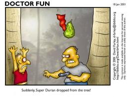 Durian Cartoon