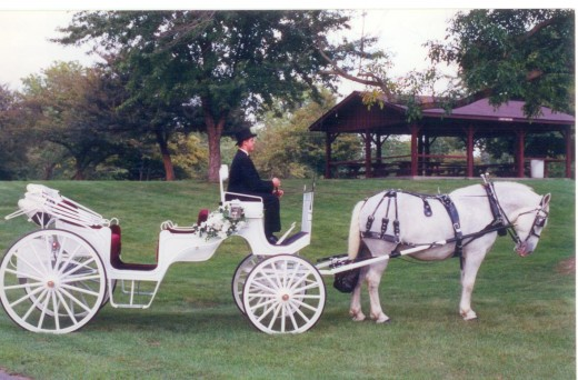 An Old Fashioned Carriage Ride Through the Park