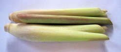 Lemongrass oil: the aromatherapy and health properties of lemongrass essential oil