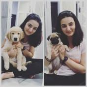 Ankita Sharma55 profile image