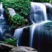 Rieke F. profile image