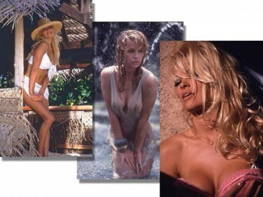 Pamela Anderson Hot Photos