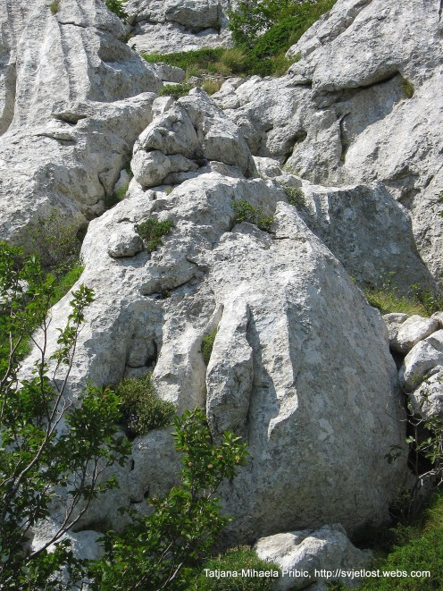 Winged mountain lion - Beaver cliffs, (Dabarski kukovi) on the way to Kiza, Velebit, Pecica kuk