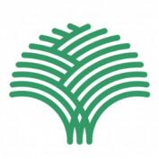 BoTreeTechnologie profile image