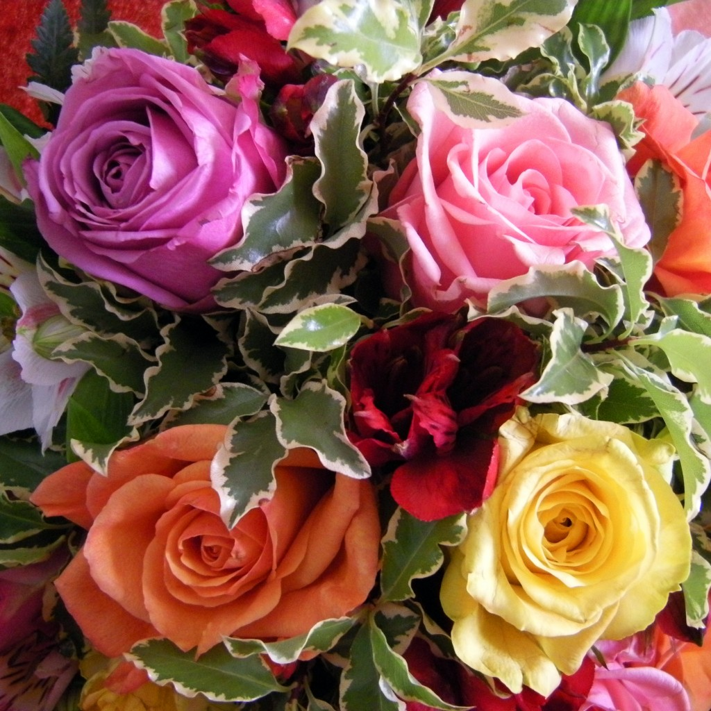 Rose Colors and Their Meanings | HubPages