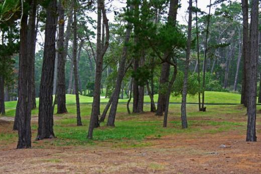portage lake state park
