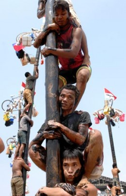 A heart-throbbing game :  Palm pole climbing. Only participants with guts and strength may join.