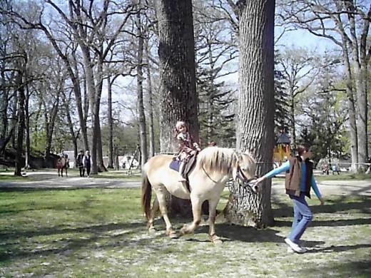 At the Park in Valençay