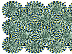 What Are Illusions ?