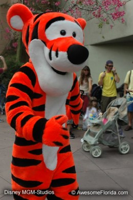 Animation Courtyard with Tigger