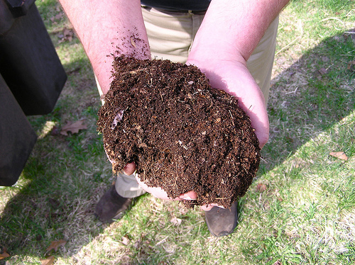 Compost  for Worm Composting