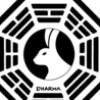 DharmaLady23 profile image