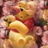 jaypooh08 profile image