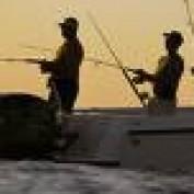 Fishing Videos profile image