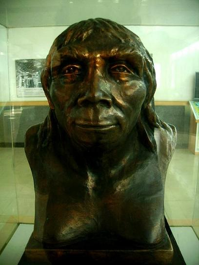 The Peking Man:   Photo by Mutt, Wikipedea