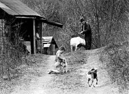 Appalachian roadway