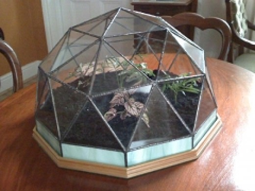"Geodesic dome terrarium in ""tiffany Style"" stained glass construction."