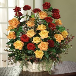 Meaning and Significance of different colors and numbers of Roses