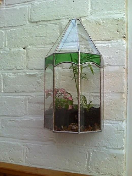 wall hanging terrarium