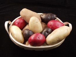 Red, Yellow, and Purple Potatoes