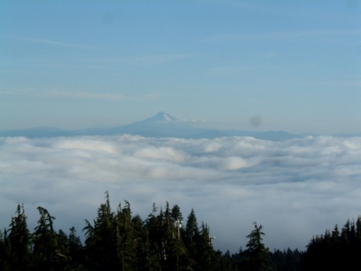 You can see Mt Hood above the clouds from the Timberline Lodge