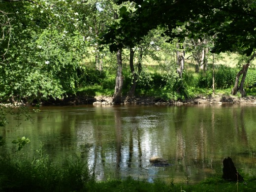 The view of the Grand River from my front porch.