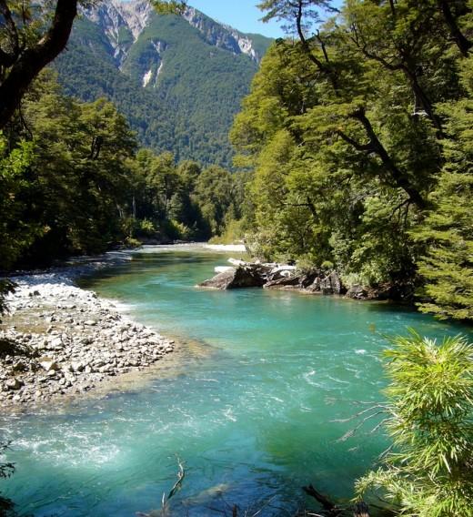 Parque Nacional Los Alerces: Cisne River