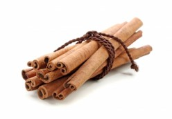 Extracting Essential Oils From Cinnamon